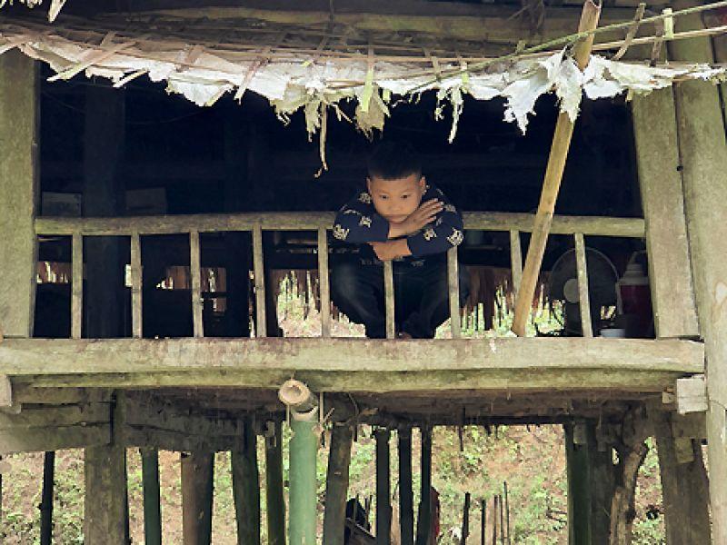 Cậu bé 10 tuổi sống một mình giữa núi rừng